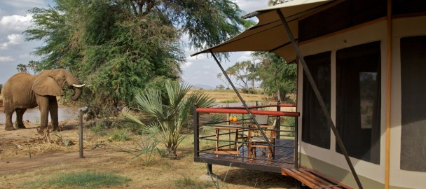 Ashnil Samburu Camp Sits In Buffalo Springs Reserve Which Takes Its Name From An Oasis Of Crystal Clear Water At The Western End